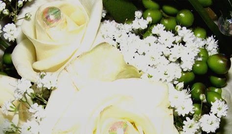 Melinda Virágüzlet